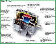 Động cơ điện SF-JRV 3HP