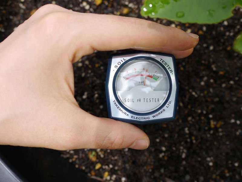 Máy đo độ ẩm đất trong nông nghiệp